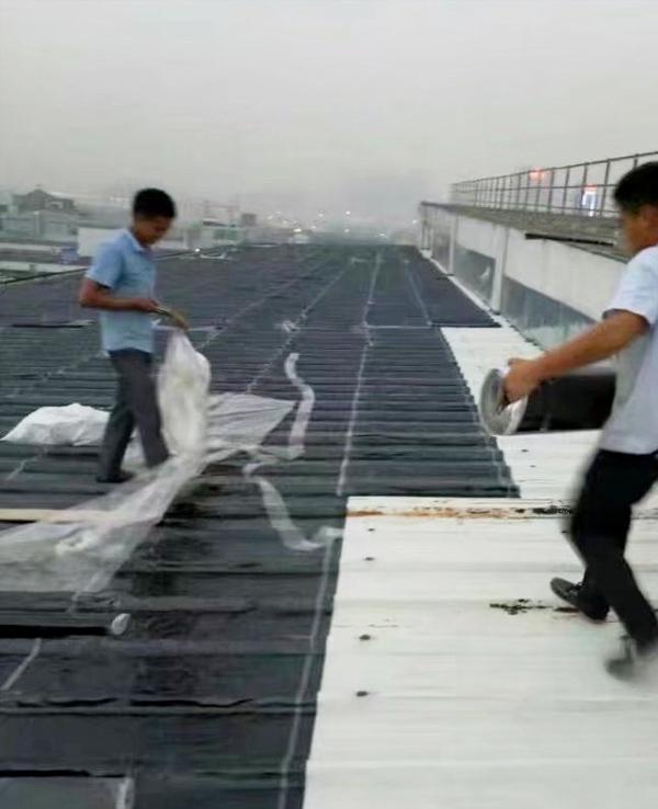 学校楼顶防水补漏